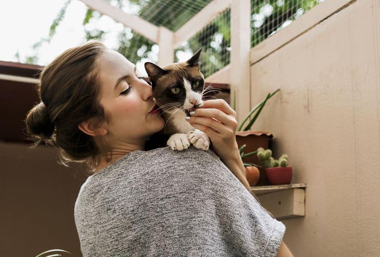 tiki cat cat food review
